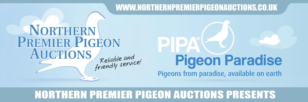 PIPA AND NORTHERN PREMIER PIGEON AUCTIONS PRESENT ANOTHER FANTASTIC SALE ON BEHALF OF BART & LUC GEERINCKX ANTOINE & RUDI DE SAER and PIETER VEENSTRA THE SALE WILL BE HELD ON SUNDAY 16th NOVEMBER AT