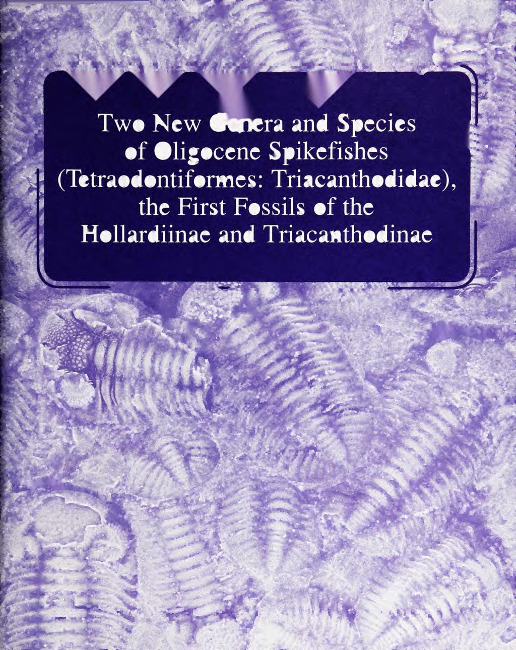 JrfVQQp^^ Two New Genera and Species of Oligocene