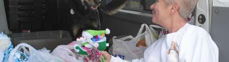 The feral TNR (Trap, Neuter & Return) program that began in late 2003 has been quite successful!