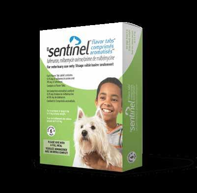 Sentinel Flavor Tabs Prevent flea infestations while providing broad spectrum internal parasite control with Sentinel Flavor Tabs SENTINEL Active ingredient: Milbemycin oxime, lufenuron Dogs Control