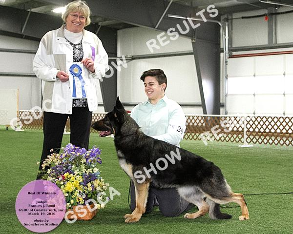 24 2 nd GEOBEVS BY THE DAWN'S EARLY LIGHT DN414889/01 11/27/14 By: Geobevs Too Hot To Handle X Gch. Geobevs Bianca,RN,HT,AX,OAJ Breeder: B. Melcher Owner: Krista M.