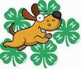 Animal Care and Housing Form, & El Paso County 4-H Code of Show Ring Ethics Hard copies of these forms are required to be turned into the Extension Office by Tues Jan 31st.