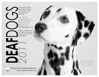 Dalmatians The urinary tract is a major weakness in Dalmatians, who are prone to forming urinary stones throughout their life.