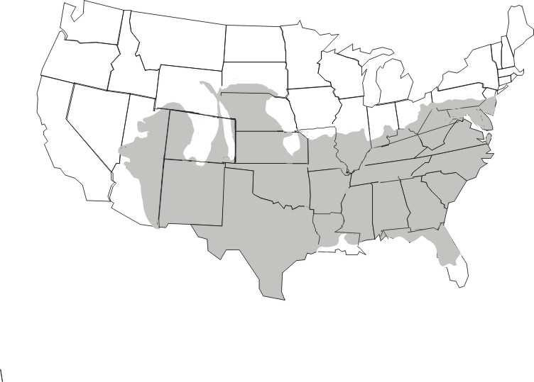 F Figure 3.1. Geographic distribution of Sceloporus undulatus in the United States.