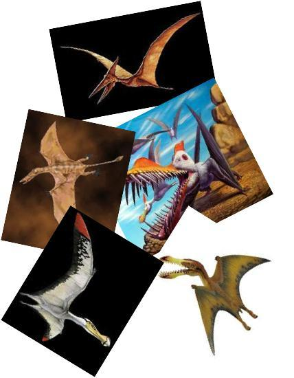 The Relationship Between Dinosaurs and Birds