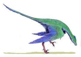 had feathers, it had a reptilian tail, and its beak is full of teeth, unlike modern birds. It lived in the.