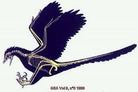 The first fossil of the Archaeopteryx was found in 1861, and by studying its joints and bones, archeologists can tell that it either lived in trees or on the ground.