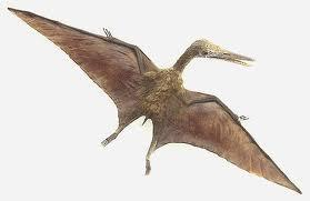 Instead of wings, Pterosaurs use thin membranes to fly.