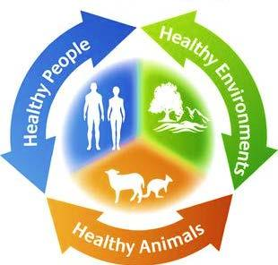 NARMS Looking Forward: From Integrated to One Health Surveillance 1. Add food animal pathogens. 2. Add appropriate on-farm testing. 3. Incorporate companion animal surveillance. 4.