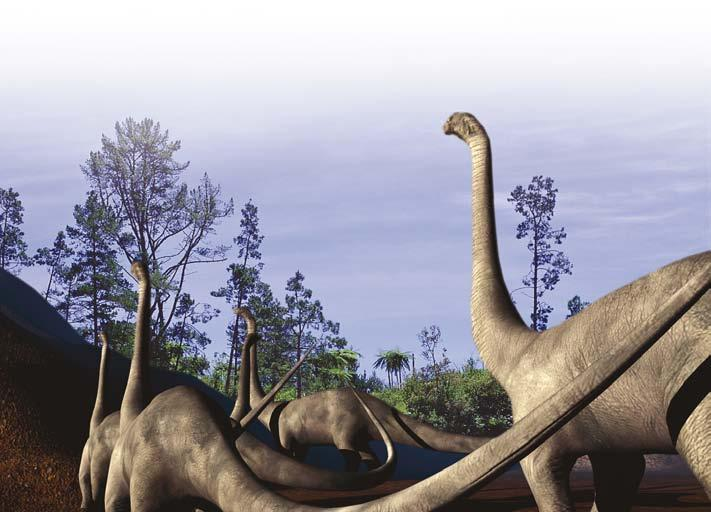 Hungry herds Most dinosaurs ate plants.