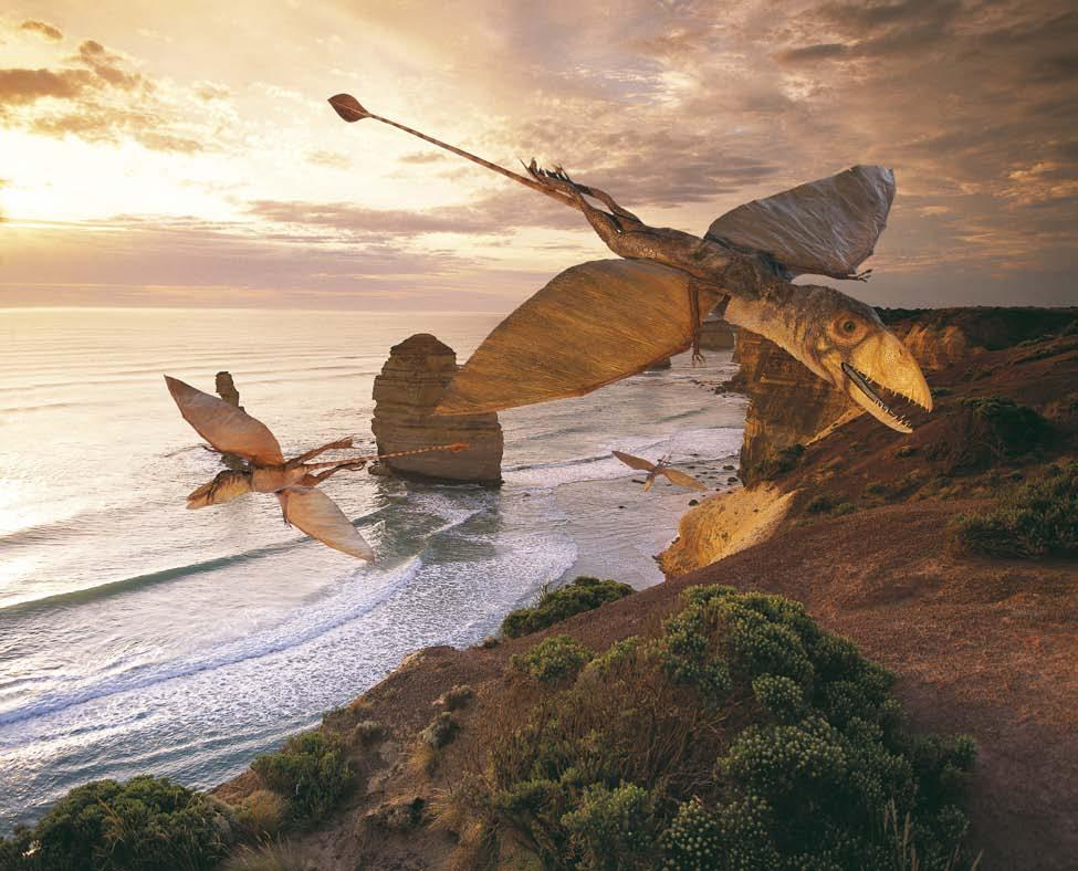 In the air Dimorphodon, a relative of the dinosaurs, was a flying reptile.
