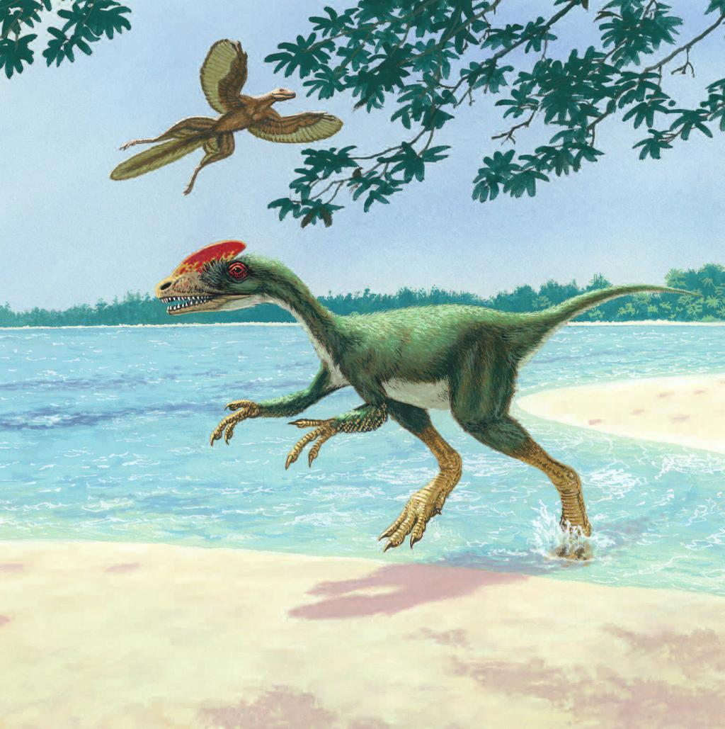 LIFE IN ASIA Dinosaurs lived between 230 million and 65 million years ago.the world did not look the same then.