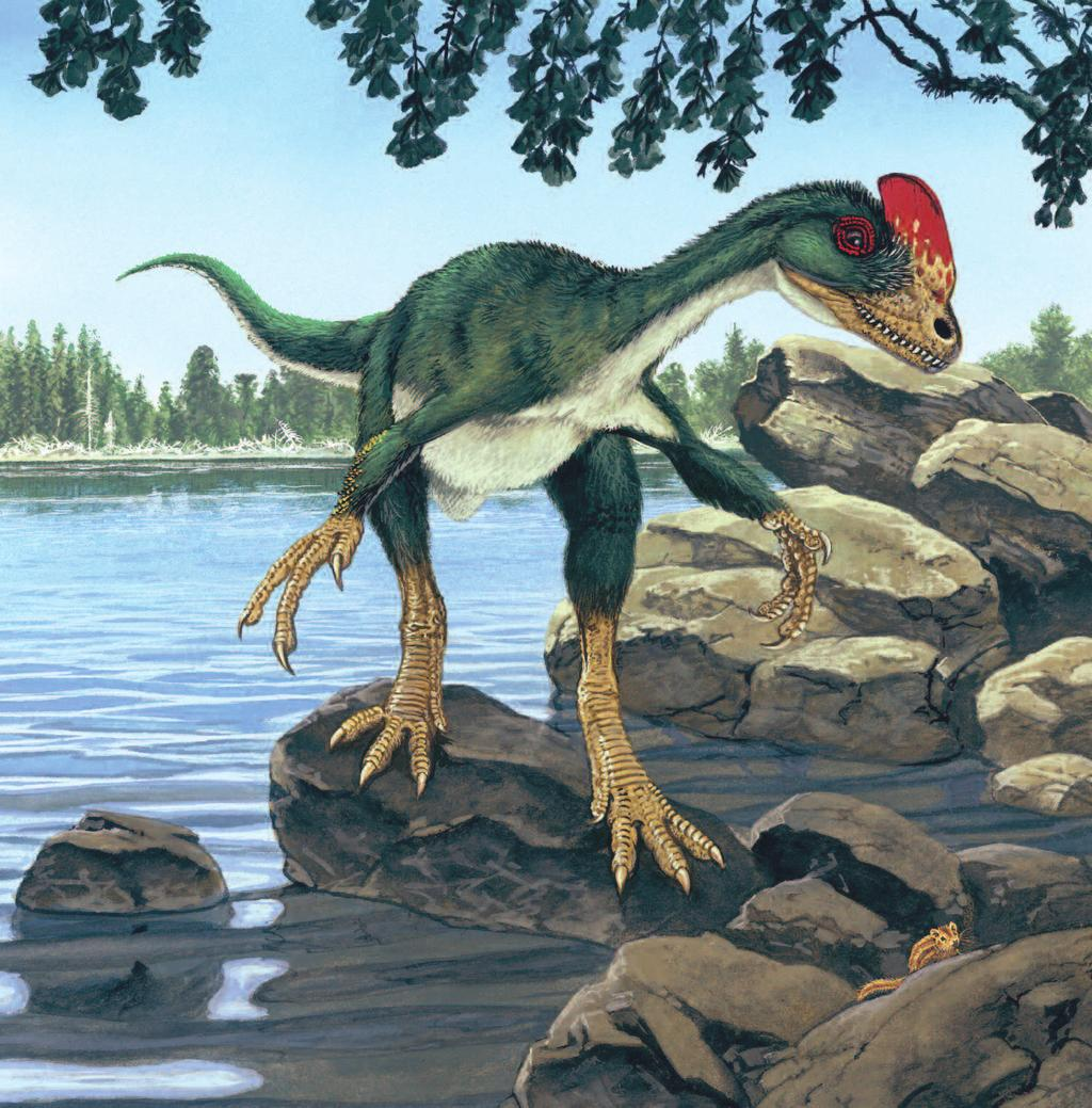 GUANLONG Pronunciation: gwahn-lawng Even though it was only the size of a stork or heron,