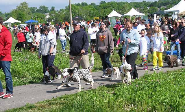 Hill s Pet Nutrition presents 2017 Waggin Trail Festival for the Animals Kentucky Humane Society Waggin Trail JUNE 11 Festival for the Animals Louisville Water Tower Sunday, June 11, 2 6 p.m. Walk, games, pet booths, food, music, contests!
