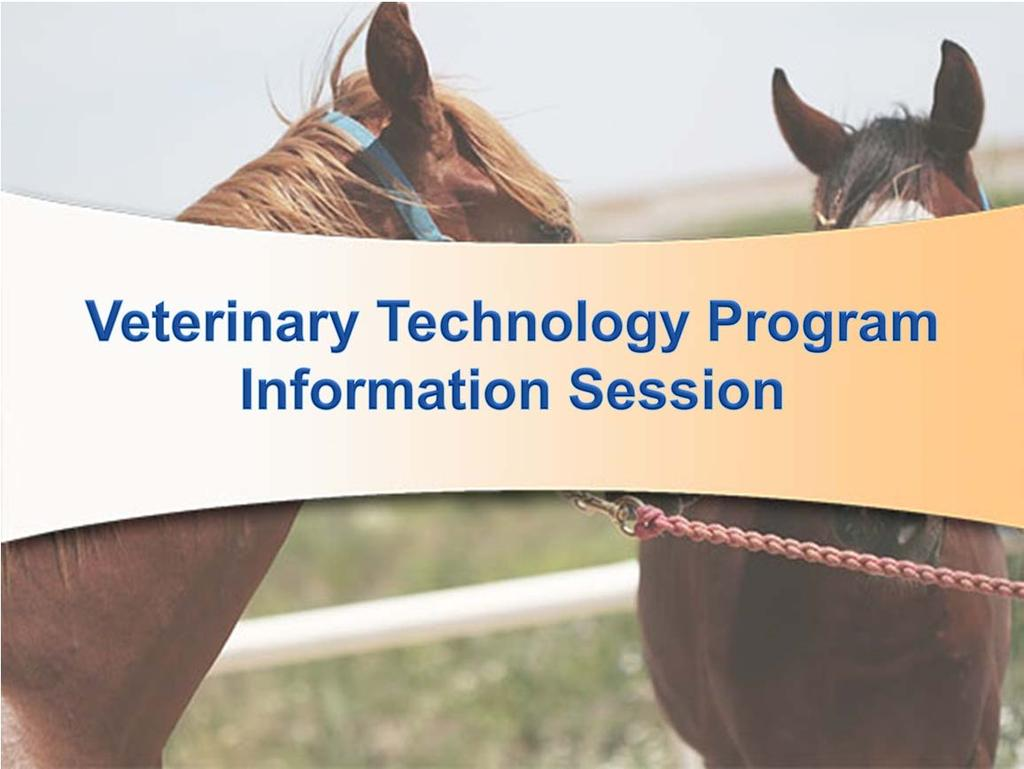 Welcome! Your interest in the veterinary technology program at ACC is greatly appreciated. AS a recently AVMA accredited program there are many exciting possibilities ahead.