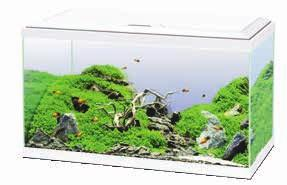 An aquarium endowed with complete equipment for discovering aquarium keeping in confident fashion,