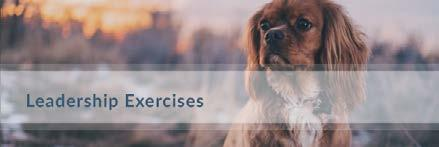 Leadership Exercises You will want to keep these rules in place until you have good control of the puppy or dog, and they dependably listen and respond to commands.