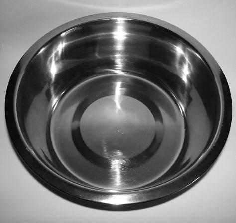 Metal Food Bowls The bowl should be the appropriate size for the dog being assessed.
