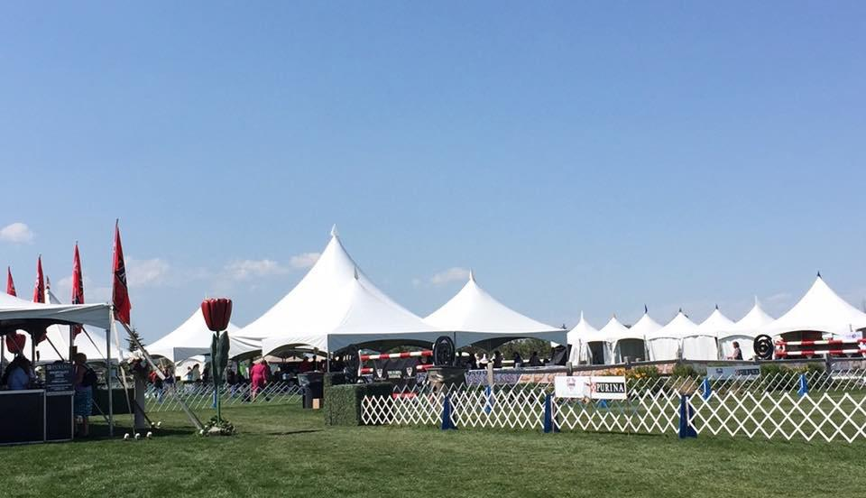 MSCC NATIONAL SPECIALTY SHOW 2015 Spruce Meadows show venue. Best Puppy: Ch.