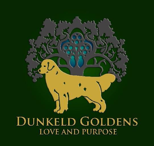 Dunkeld Goldens- Puppy Application Please complete and email to: dunkeldgoldens@gmail.com Please complete this application in its entirety.
