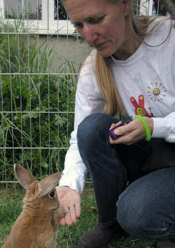 Clicker training teaches the bunny that he can cause you to click, and then give him a treat, through his own actions.
