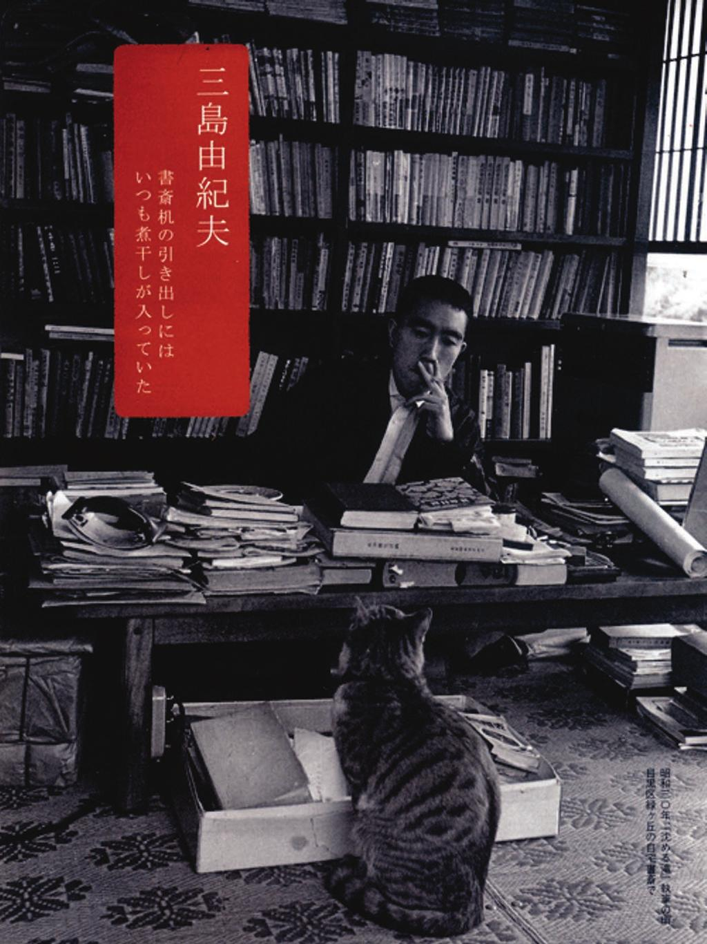 Chapter 4 Figure 4.7: Mishima and cat.