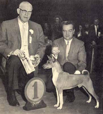 years, it was evident to me Marianne Klinkowski that the breed background of prospective judges had a lot of influence on their concept of a good Basenji.