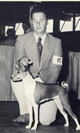 Not long ago while reading the premium for the Santa Barbara Kennel Club s upcoming show I noticed a trophy being given to honor a true gentleman, Tom Stevenson, one of my favorite judges.