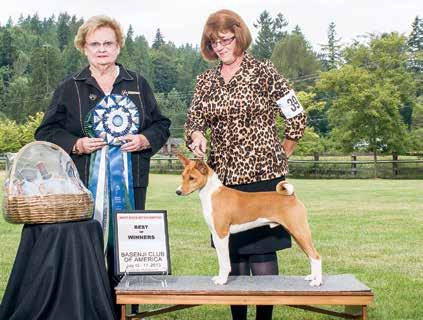 Best of Breed GCh Jasiri-Sukari Win Tin Tin Breeder-owner-handler Julie Jones Best of Winners / Best BBE (WD) Arubmec s Take a Chance on Me