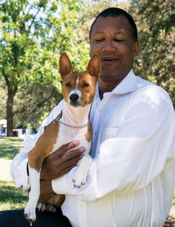Jeraldeen acquired her first Basenji in 1963 from Ben and Frances Husbands on a breeders contract. She became active in obedience and later conformation under the Delahi Kennel name.