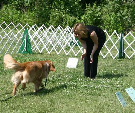 TEST 7: COMING WHEN CALLED This test demonstrates that the dog will come when called by the handler. The handler will walk 10 feet from the dog, turn to face the dog, and call the dog.
