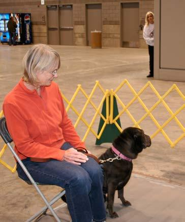 TEST 10: SUPERVISED SEPARATION This test demonstrates that a dog can be left with a trusted person, if necessary, and will maintain training and good manners.