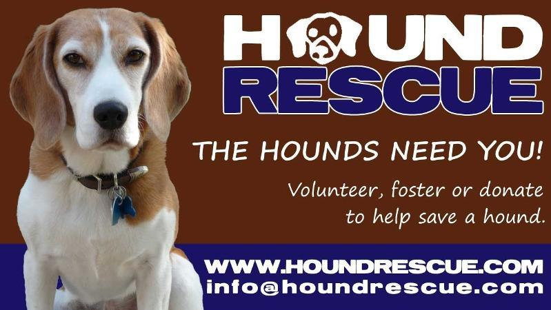 Forward email This email was sent to houndrescue_smith@yahoo.com by info@houndrescue.