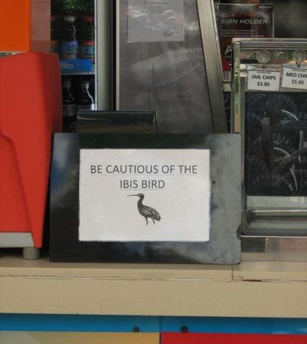 Figure 30 Be cautious of the ibis bird : A sign on a counter in the Central Cafe precinct, Southbank (photo taken 3 October 2015) At the beginning of The Ethics of Waste, Gay Hawkins (2006) discusses