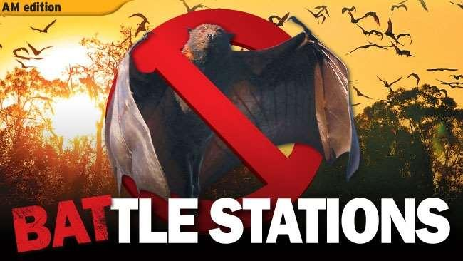 "Figure 41 ""Battlestations"": Some of the media representations of Campbell Newman s war on flying foxes (Tin 2012, Wardill 2013) We have seen in Chapter 4 that flying foxes are creatures whose nomadic"