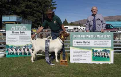 New Zealand - 2017 Wanaka Show Judged by Theuns Botha Received from Warwick Ferguson This year we were very honoured to have the judging services of South African Theuns Botha.