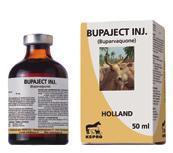 BUPAJECT INJ. Contains per ml: Buparvaquone 50 mg Bupaject Inj. is a clear, ruby-red solution for intramuscular injection and contains buparvaquone as active ingredient.