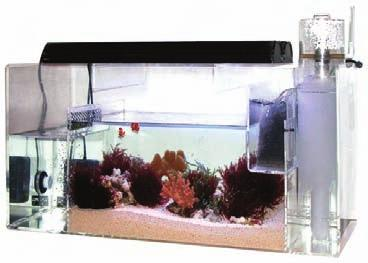 FILTERS AND FILTER MEDIA Aquarium Filters Refugiums CPR CITR In-Tank Refugium The In-Tank Refugium is a safe house that provides a protected area within an aquarium, meeting a variety of essential