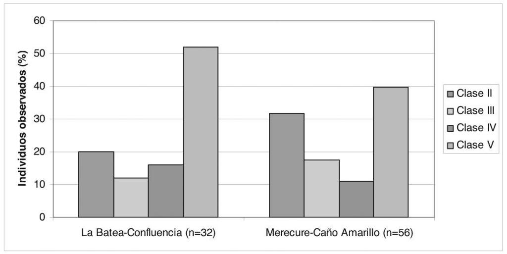 Population Structure In the most representative sampled sections, the caiman populations were integrated by a major proportion of adult individuals Class V: in the La Batea-Confluencia section there