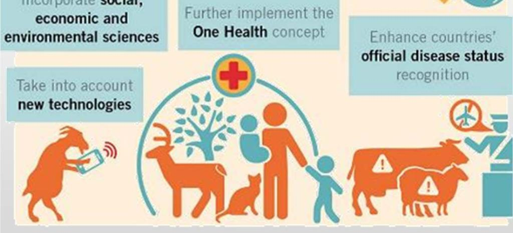 vaccines Support to the eradication of selected animal diseases (FMD, PPR, Rabies) Involvement in scientific platforms effective &