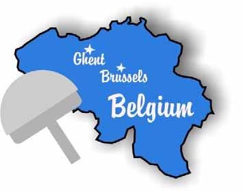Belgium and My BHR A Story About Hip Resurfacing by Patricia Walter Electronic book published by: Six Dog Studio All rights reserved Text Copyright 2006 by Patricia Ann Walter Illustrations Copyright