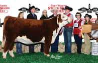 ADVANCE 104A BW 4.1 WW 58 YW 85 MM 33 M&G 62 UDDR 1.3 TEAT 1.4 FAT 0.014 REA 0.65 MARB 0.02 $CHB 33 CRR 5280, sire of Lot 2. C 88X Notice Me 1311 ET, dam of Lot 2.