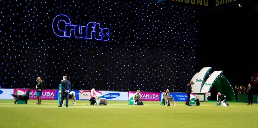 Crufts 2015 was an outstanding event with much for all dog people to be proud of.
