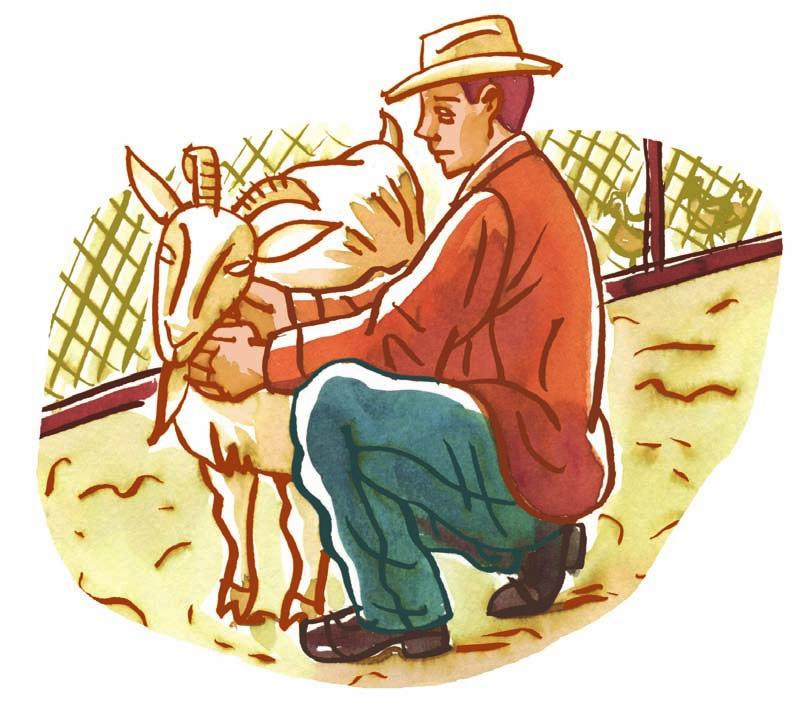 Ethics, Religious Culture and Dialogue George s Passion George was a very devoted farmer who loved all animals equally. He had grown very fond of his hens and his goat.