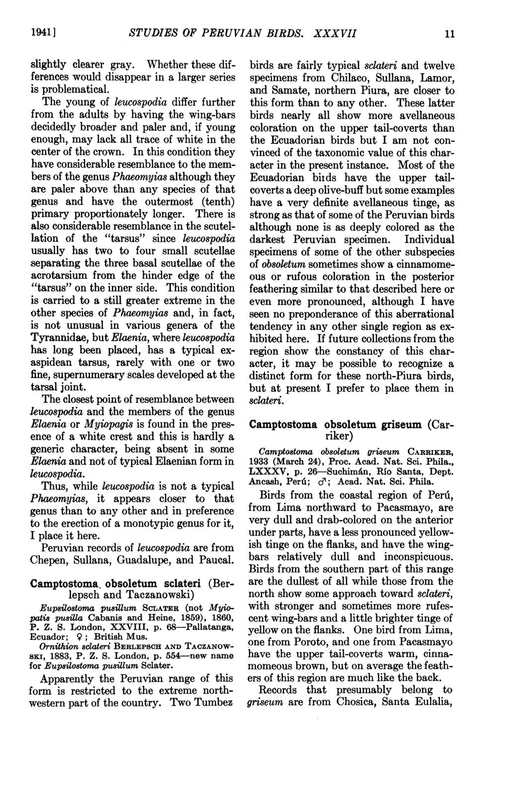 1941 ] STUDIES OF PERUVIAN BIRDS. XXXVII 11 slightly clearer gray. Whether these differences would disappear in a larger series is problematical.