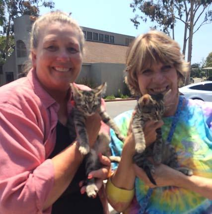 RESQCATS FALL 2016 3 RESQCATS HITS A MILESTONE! Written on July 30, 2016 In June, RESQCATS proudly announced that we had reached 2500 total adoptions since we began in 1997.