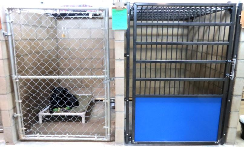 The new kennel doors will allow for better cleaning, prevent dogs from demolishing the metal link and causing hazards for themselves, such as sharp wires and holes that noses, feet and other body