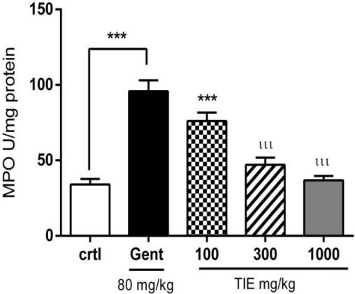 001) in animals that received 100 mg/kg, 300 and 1000 mg/kg of extract respectively in combination with gentamicin (Figure 2). Gentamicin (80 mg/kg) reduced catalase significantly (p< 0.