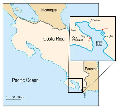 Project Report and Summary of Multi-Species Marine Sighting Survey in Golfo Dulce, Costa Rica, January February 2010 Sponsored by Friends of the Osa, PO Box 5482-03, Puerto Jiménez, Costa Rica. B. L.