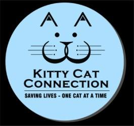 December 10, 2017 Kitty Cat Connection Newsletter In this issue: Cats in our care & Success Story of the Month Behavioral News Did You Know? Kitty Cat Connection, Inc.